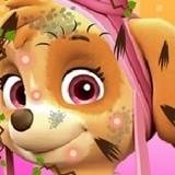 Игра Щенячий Патруль: Скай В Спа Салоне