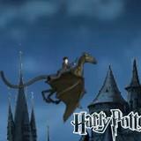 Игра Полёт на Фестрале: Гарри Поттер